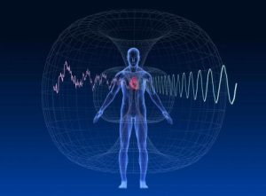 human magnetic field around heart
