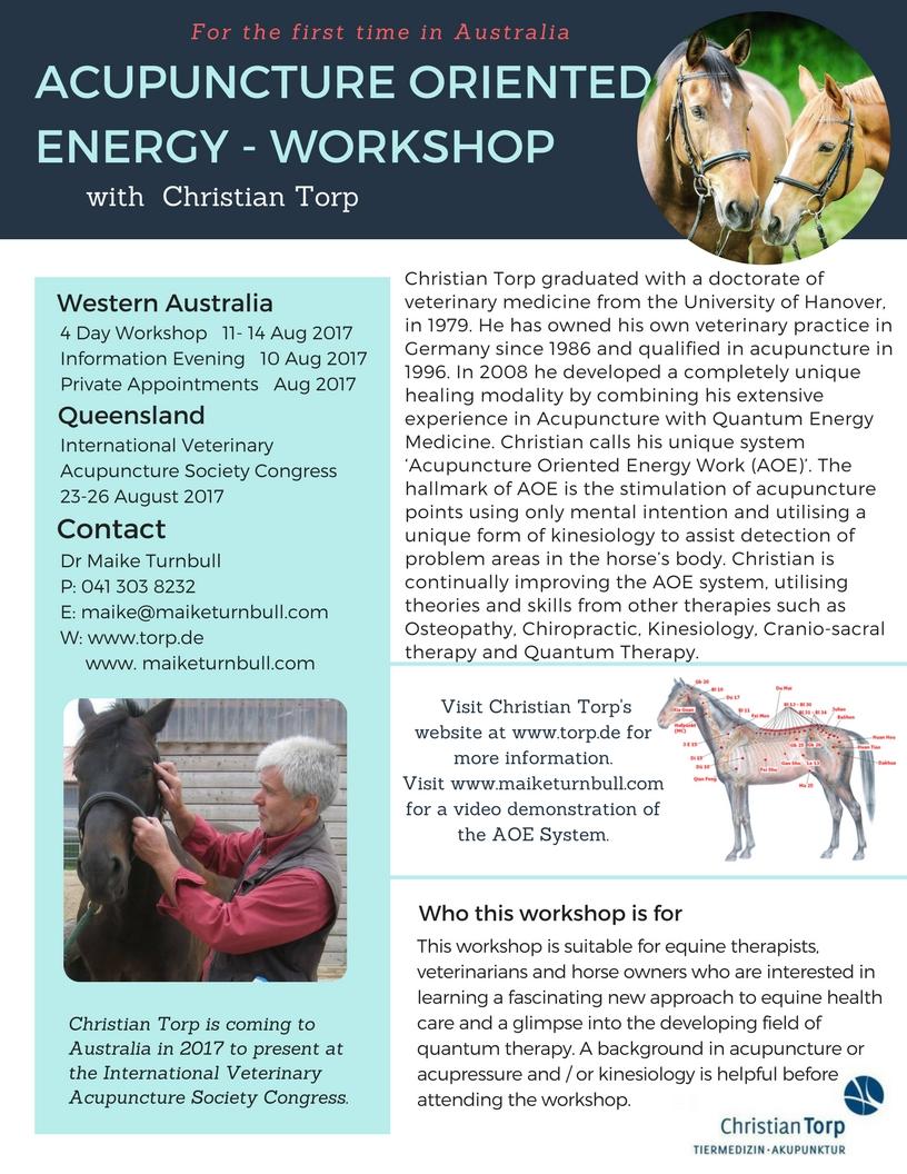 ACUPUNCTURE ORIENTED ENERGY Workshop Flyer