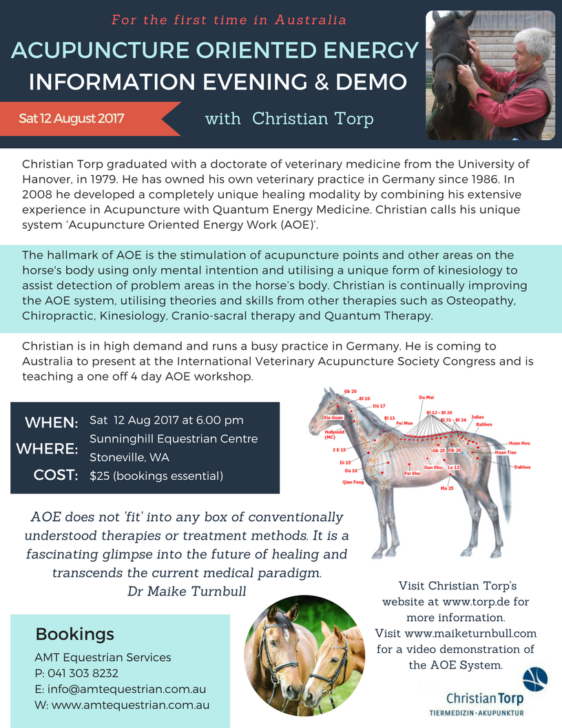 ACUPUNCTURE ORIENTED ENERGY Info Evening Flyer